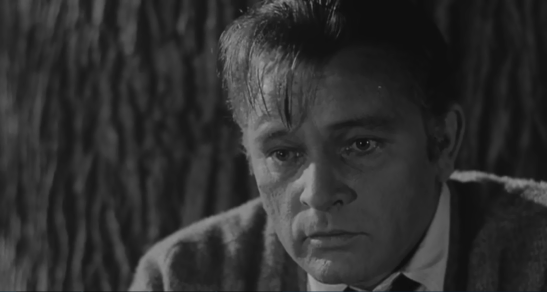 Richard Burton George Who's Afraid of Virginia Woolf.